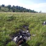 Горы Алтая, Онгудайский район